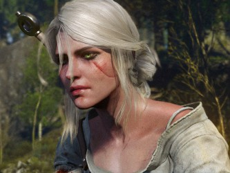 The Witcher 3 ���� ����������� �������� �� ����